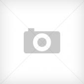 Rekam DVC-380 серебристый (2504000003)