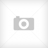 BOSCH Алмазный диск (2608602205)